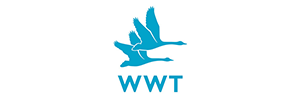 WWT Wildfowl and Wetlands Trust
